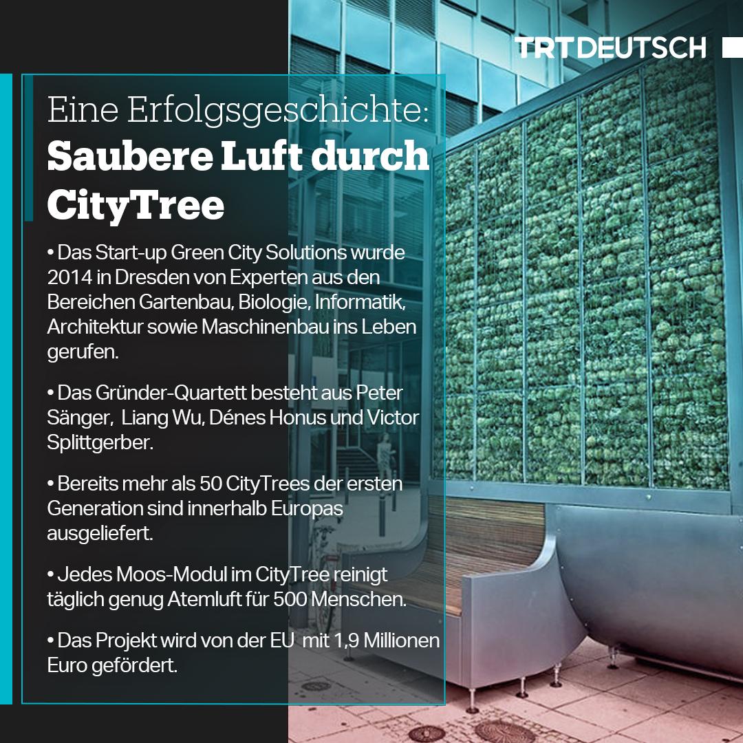 FactCard: CityTree