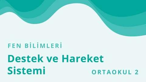 TRT EBA TV 13 Ekim Ortaokul