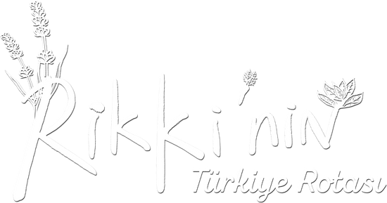 Rikki'nin Türkiye Rotası 1.Bölüm